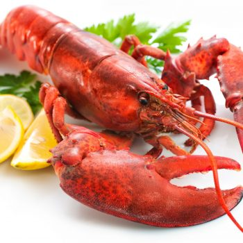 Lobster from West Coast Fish